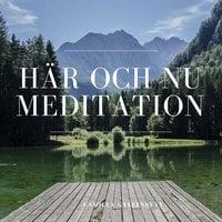 Här och nu - meditation - Camilla Gyllensvan