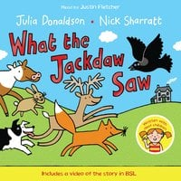 What the Jackdaw Saw - Julia Donaldson
