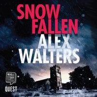 Snow Fallen - Alex Walters