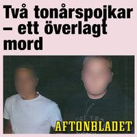 Två tonårspojkar - ett överlagt mord - Aftonbladet