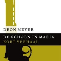 De schoen in Maria - Deon Meyer