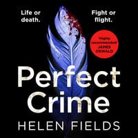 Perfect Crime - Helen Fields