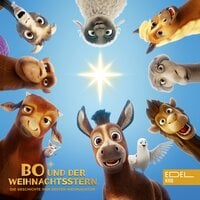 Bo und der Weihnachtsstern - Thomas Karallus