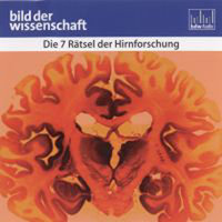 Die 7 Rätsel der Hirnforschung - Judith Rauch, Karin Hollricher, Jochen Paulus