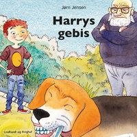 Harrys gebis - Jørn Jensen