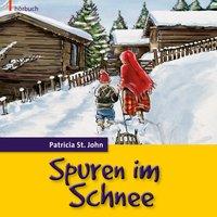 Spuren im Schnee - Patricia St.John