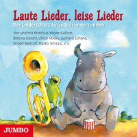 Laute Lieder, leise Lieder - Matthias Meyer-Göllner