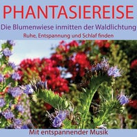 Phantasiereise: Die Blumenwiese inmitten der Waldlichtung - Maximilian Neumann