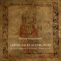 Leitin að klaustrunum - Steinunn Kristjánsdóttir
