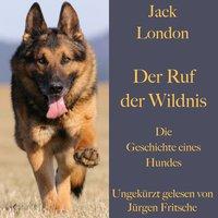 Der Ruf der Wildnis: Die Geschichte eines Hundes - Jack London