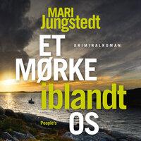 Et mørke iblandt os - Mari Jungstedt