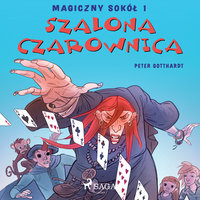 Magiczny sokół 1 - Szalona Czarownica - Peter Gotthardt