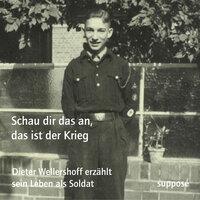 Schau dir das an, das ist der Krieg - Dieter Wellershoff, Thomas Böhm, Klaus Sander