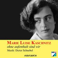 Ohne Aufenthalt sind wir - Marie Luise Kaschnitz