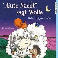"""""""Gute Nacht"""", sagt Wolle: Gutenachtgeschichten - Christine Werner"""