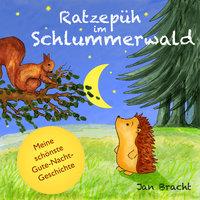Ratzepüh im Schlummerwald - Jan Bracht