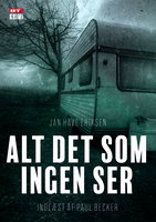 Alt det som ingen ser - Jan Have Eriksen