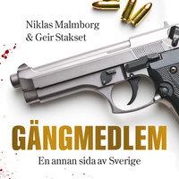 Gängmedlem : en annan sida av Sverige - Niklas Malmborg,Geir Stakset