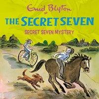 Secret Seven Mystery: Book 9 - Enid Blyton