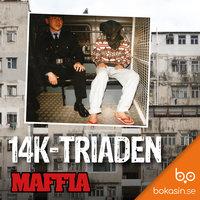 14K-triaden - Bokasin