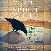 Awakening to the Spirit World: The Shamanic Path of Direct Revelation - Sandra Ingerman, Hank Wesselman