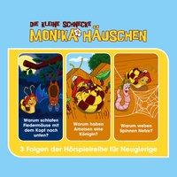 Die kleine Schnecke Monika Häuschen - Hörspielbox Vol. 3 - Kati Naumann