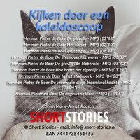 Kijken door een kaleidoscoop - Herman Pieter de Boer