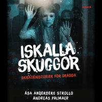 Iskalla skuggor - Åsa Anderberg Strollo, Andreas Palmaer