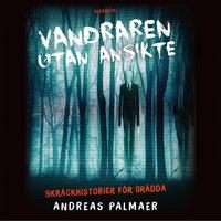 Vandraren utan ansikte - Andreas Palmaer