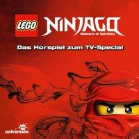 LEGO Ninjago Special - Dan Hageman, Kevin Hageman