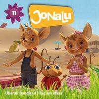 JoNaLu - Folgen 16-17: Überall Banditen - Diverse Autoren
