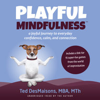 Playful Mindfulness: A joyful journey to everyday confidence, calm, and connection - Ted DesMaisons
