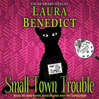 Small Town Trouble - Laura Benedict