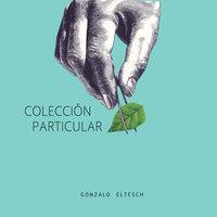 Colección particular - Gonzalo Eltesch