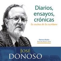 Diarios, ensayos, crónicas: la cocina de la escritura - José Donoso