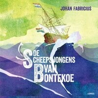De scheepsjongens van Bontekoe - Johan Fabricius
