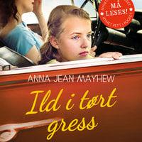 Ild i tørt gress - Anna Jean Mayhew