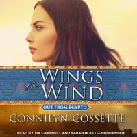 Wings of the Wind - Connilyn Cossette