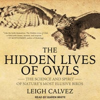 The Hidden Lives of Owls - Leigh Calvez