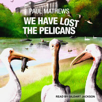 We Have Lost The Pelicans - Paul Mathews