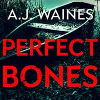Perfect Bones - A.J. Waines