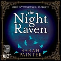 The Night Raven - Sarah Painter