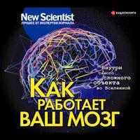 Как работает ваш мозг - Сборник New Scientist