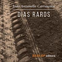 Dias raros - João Anzanello Carrascoza