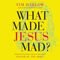 What Made Jesus Mad? – Rediscover the Blunt, Sarcastic, Passionate Savior of the Bible - Tim Harlow