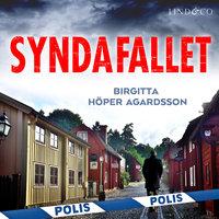 Syndafallet - Birgitta Höper Agardsson