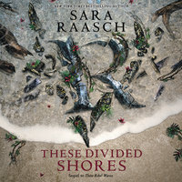 These Divided Shores - Sara Raasch