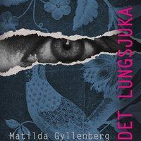 Det lungsjuka huset - Matilda Gyllenberg
