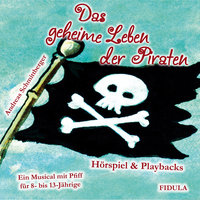 Das geheime Leben der Piraten - Andreas Schmittberger, Doris Corbé