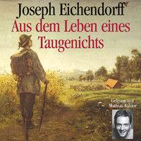 Aus dem Leben eines Taugenichts - Josef Freiherr von Eichendorff